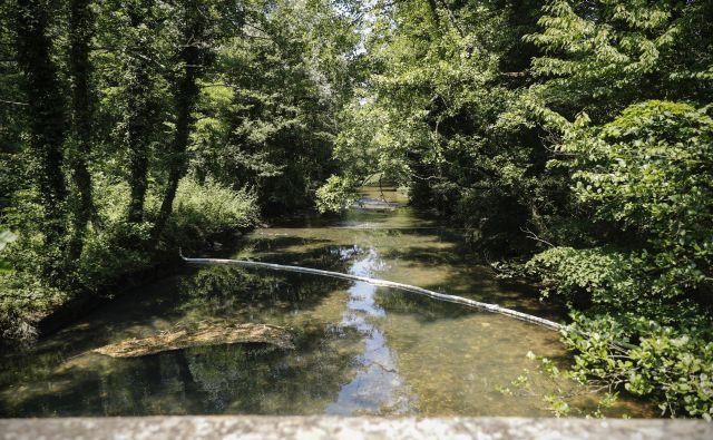 Vodno zajetje Rižana. FOTO: Uroš Hočevar/Delo