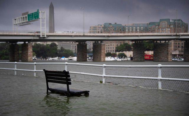 Klop pod vodo v bližini reke Potomac. FOTO:Jim Watson/Afp