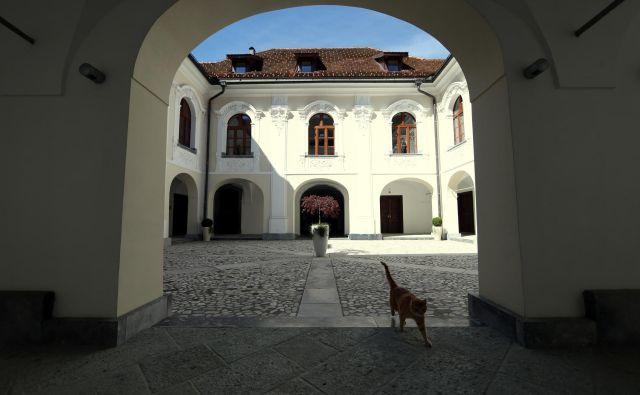 Dvorec Goričane, ki je več let propadal, je leta 2007 z denacionalizacijo prešel v last ljubljanske nadškofije. Foto Uroš Hočevar