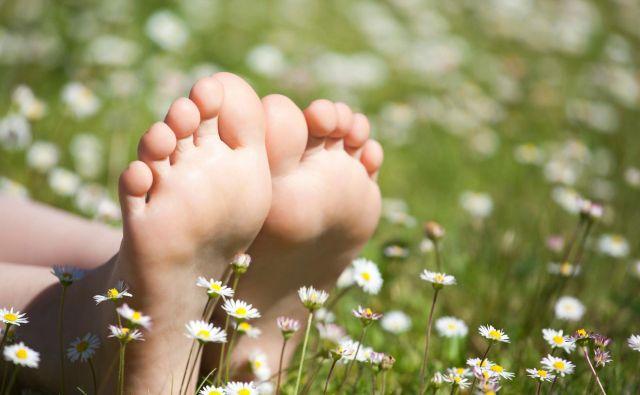 Stopala Foto: Shutterstock