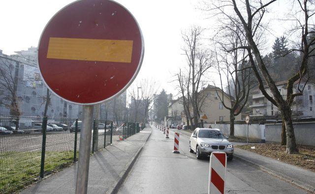 Lokalni dovoz bo omogočen, so sporočili z Mestne občine Ljubljana. FOTO: Leon Vidic/Delo