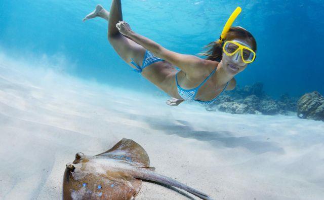 Šnorkljanje je zakon! Foto: Shutterstock