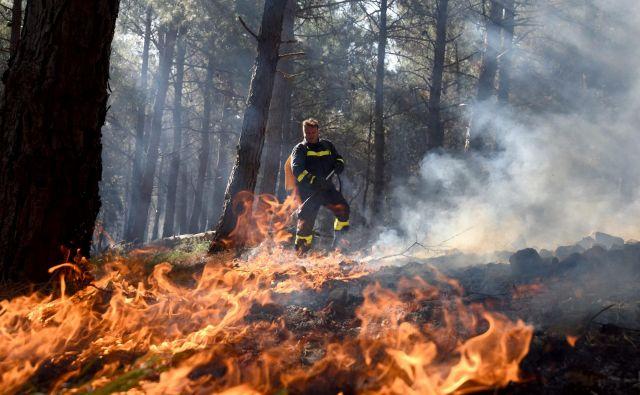 Gasilci so do jutranjih ur požar lokalizirali. Pri tem so jim pomagali tudi s helikopterji. FOTO: Jure Mišković/Cropix