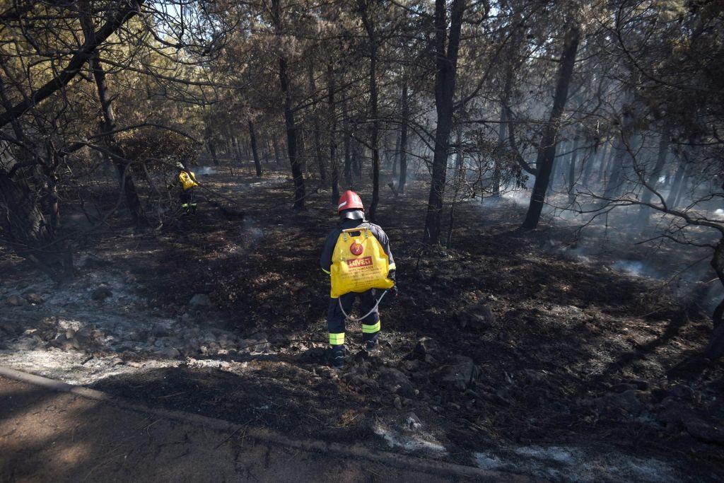 FOTO:Zrće v plamenih in dimu, žurerji pa so plesali dalje (VIDEO)