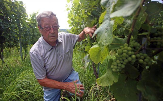 Jože Protner ni znan samo kot nekdanji kmetijski minister ali avstrijski konzul, ampak tudi kot enolog in ljubiteljski igralec. FOTO: Tadej Regent/Delo