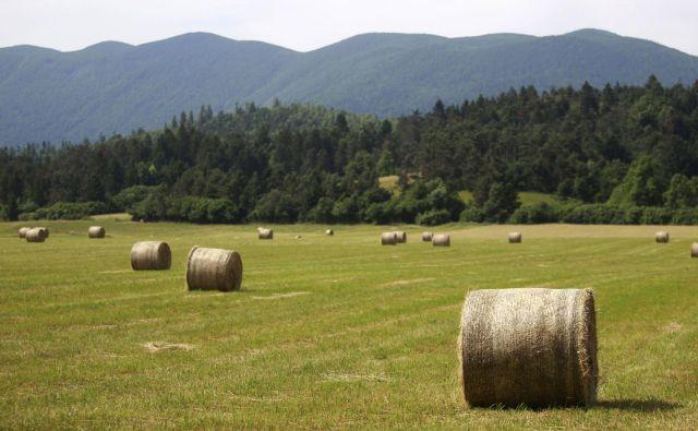 Sedaj se pokošena trava shranjuje v okrogle bale, ki jih ovijejo v trpežen polivinil. Foto Roman Šipić