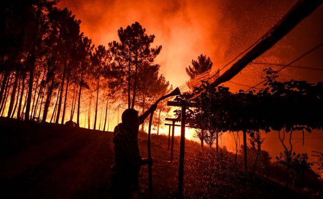 Po podatkih portugalske civilne zaščite se gasilci v regiji borijo s tremi požari. FOTO: Patricia De Melo Moreira/AFP