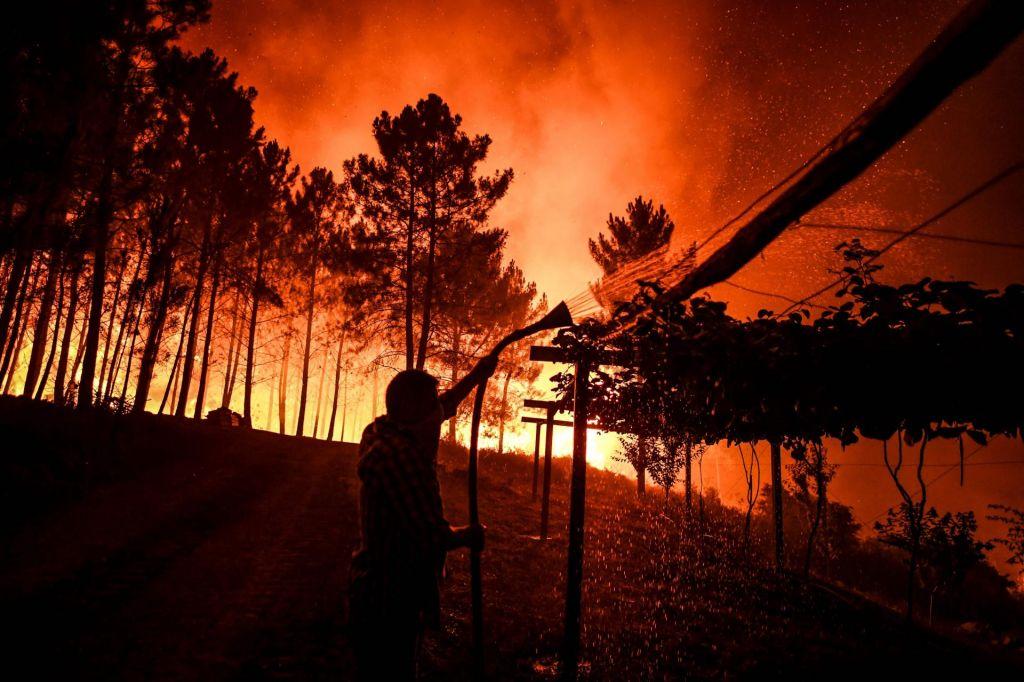FOTO:Portugalsko zajeli obsežni gozdni požari