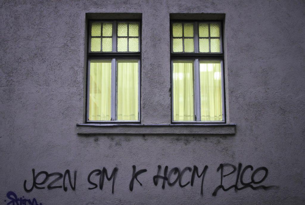 FOTO:Društvo sovražnikov slovenščine