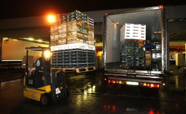Sveže sadje in zelenjava, naložena na tovornjakih, se med čakanjem na inšpektorje lahko pokvarita. FOTO: Blaž Samec