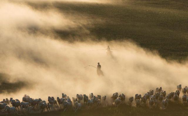 Konji in njihovi čuvaji na prostranih mongolskih prerijah v avtonomni regiji Ujimqin. FOTO: China Stringer Network/REUTERS