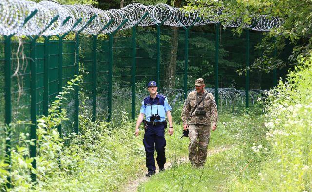 Na slovenski južni meji za varnost skrbijo policisti in vojaki. FOTO: Tomi Lombar/Delo