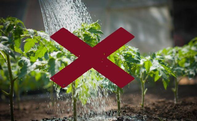 Ni vsak način zalivanja dober, z nekaterimi naredimo veliko škode. FOTO: Shutterstock