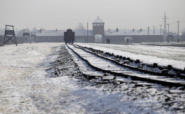 Po Himmlerjevem ukazu z dne 16. decembra 1942 so morali biti Romi v nekaj tednih zbrani v koncentracijskem taborišču Auschwitz-Birkenau. Foto Reuters