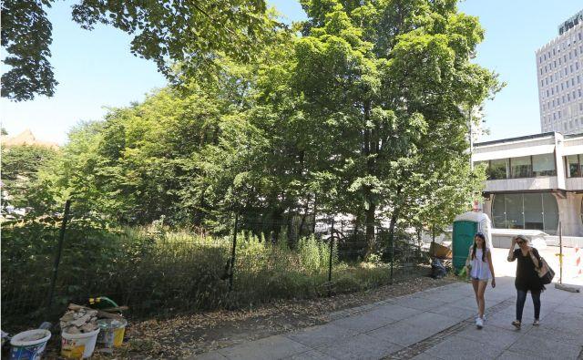 Informacija, da bo na novo pozidana zelena površina ob Erjavčevi ulici v Ljubljani, nekoč namenjena parku v javni rabi, je negativno presenetila marsikoga. Foto Tomi Lombar