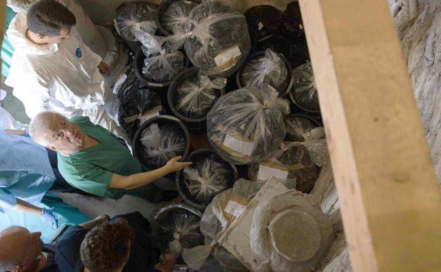 Rezultati analize več sto delno nedotaknjenih kosti so pokazali, da noben od ostankov ne bi mogel biti zakopan po koncu 19. stoletja. FOTO: AFP