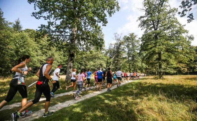Za ustrezne priprave na enega najlepših tekov v Sloveniji so organizatorji poskrbeli z brezplačnimi tekaškimi vadbami. FOTO: Anže Krže