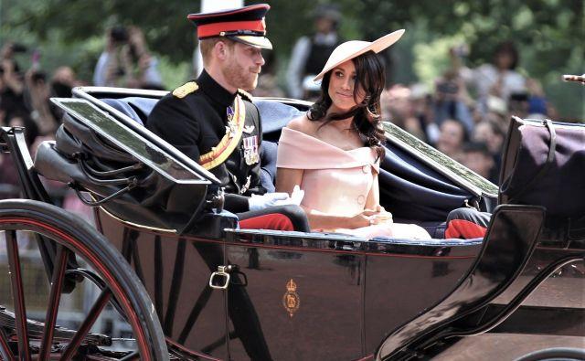 Princ Harry in Meghan Markle sta najprej uredila hišo, v katero sta se vselila skupaj z novorojenim sinom Archijem. FOTO: Shutterstock