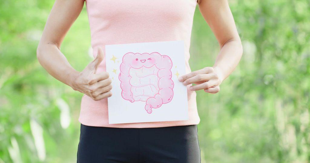 Kaj sestavlja zdravo črevesno mikrobioto