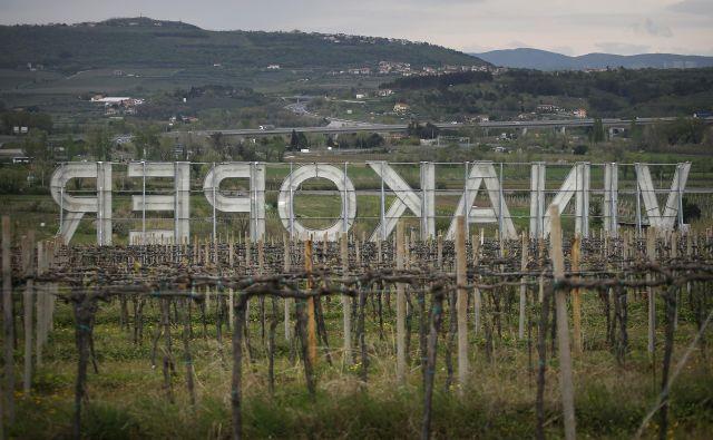 Polovični delež v lastniku Vinakopra je najzanimivejše premoženje Istrabenza. FOTO: Blaž Samec/Delo