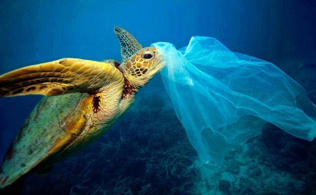 Plastične vrečke močno obremenjujejo oceane. FOTO: Troy Mayne