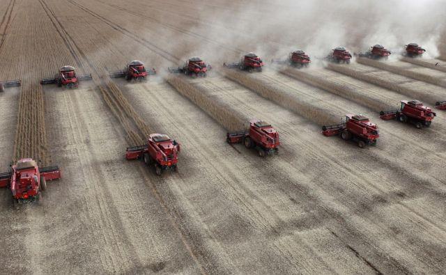 Soja in drugi kmetijski pridelki naj bi bili kamen spotike med velesilama. FOTO: Reuters