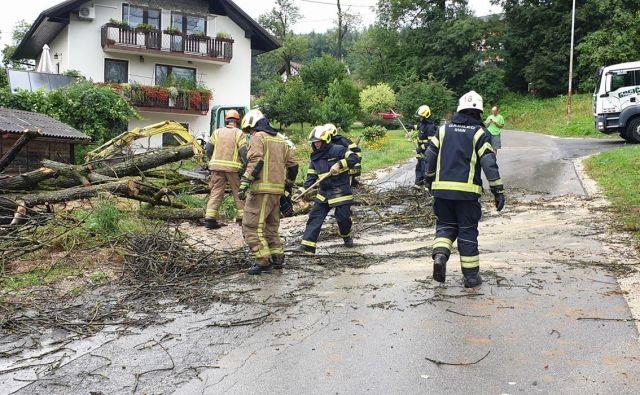 V Domžalah je veter podrl drevo. FOTO: CZR Domžale
