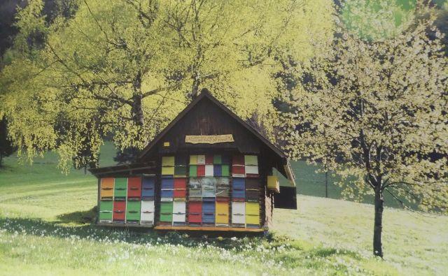 Čebelnjake, posebne hišice za čebele, je prvi omenil in upodobil Valvazor. Fotografija z razstave