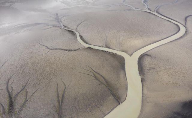 Ledeniki se hitro talijo. FOTO: Matjaž Krivic