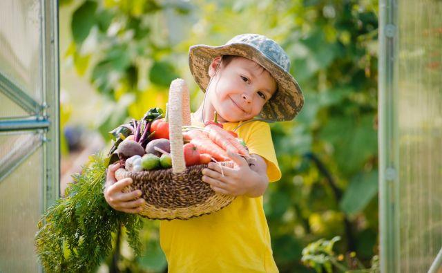 Pridelek FOTO: Shutterstock