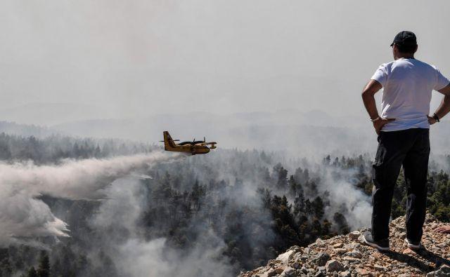 V gašenju sodeluje več kot 200 gasilcev.FOTO: Louisa Gouliamaki/AFP