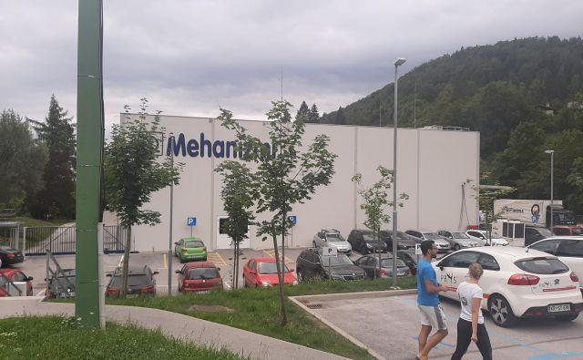 Podjetje na zdajšnjih dveh lokacijah, v Lipnici in Kamniku, zaposluje skoraj 700 ljudi. FOTO: Janez Porenta