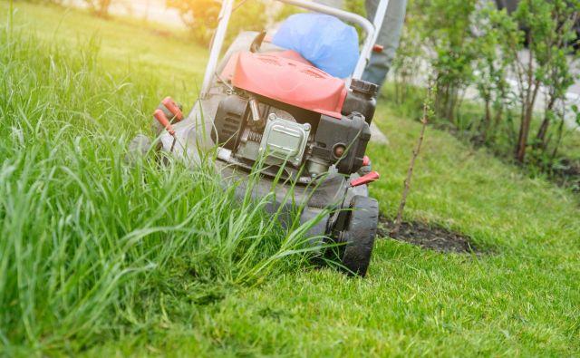 Košnja trave FOTO: Shutterstock