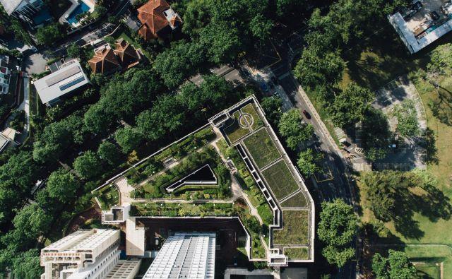 Zelene strehe so v številnih mestih prej pravilo kot izjema, njihova namembnost pa je zelo različna. Na fotografiji primer igrišč in parka v Singapurju. Foto Chuttersnap/Unsplash