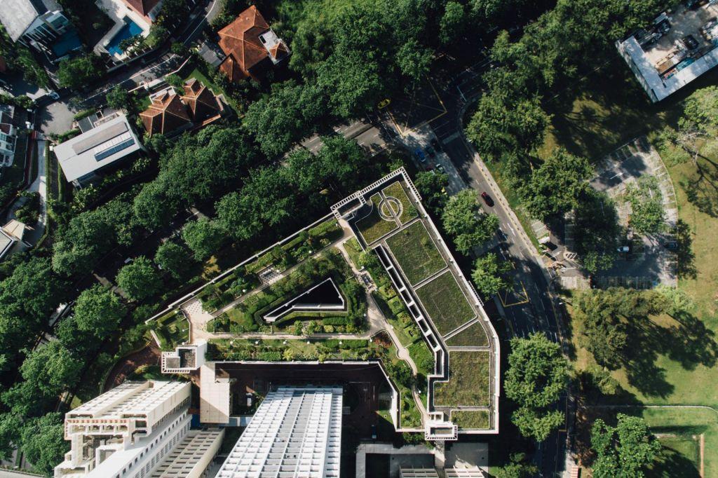 FOTO:Iščejo ravno streho z največ potenciala