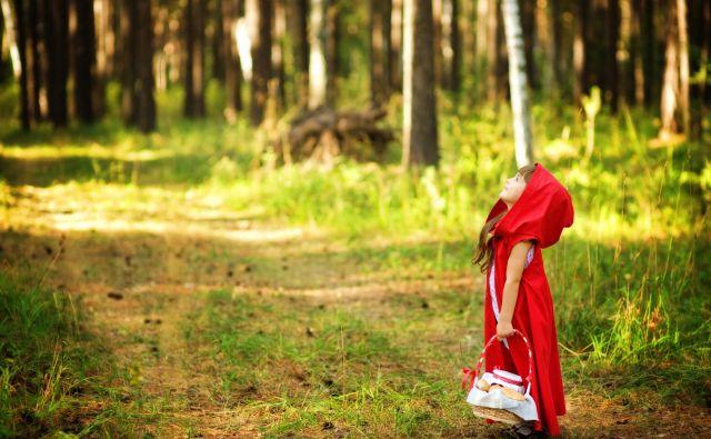 Brez volka tudi Rdeče kapice ne bi bilo. FOTO: Press