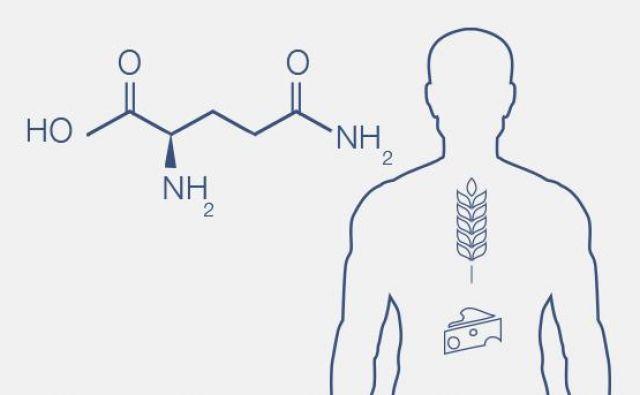 Prehranski vnos glutamina (dodatna oskrba) je tako pomemben predvsem v stanjih stresne presnove (bolezni, telesni napor).