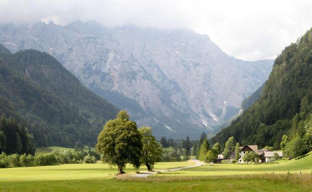 Čeprav je dolina avgusta zelo obiskana, se tudi takrat lahko zgodi, da boste sredi tedna na pohodnih poteh skoraj sami. FOTO: Marko Feist