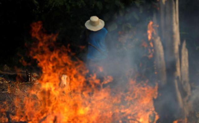 Rekordno število požarov v Braziliji. Krivdo zanje pripisujejo predsedniku države. FOTO: Bruno Kelly/Reuters