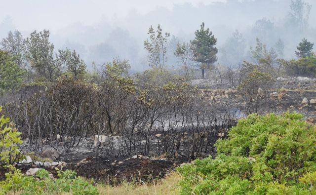Požar na Cerju FOTO: Stanko Močnik, GZ Cerkno