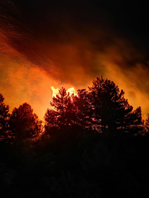 FOTO:Požar na Cerju je pogašen