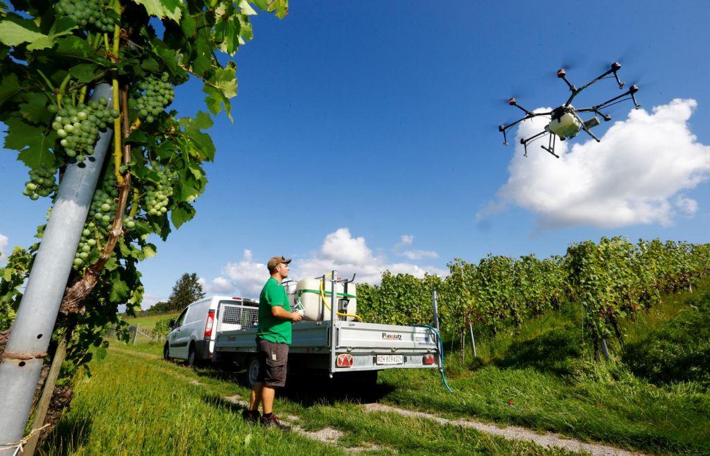 Kmetijstvo: kje smo in kam gremo