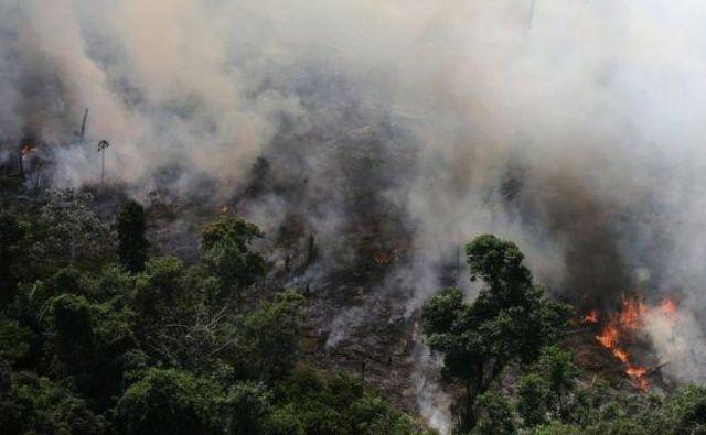 V Braziliji nimajo upanja, da bo v prihodnjih treh letih kaj bolje. FOTO: Reuters