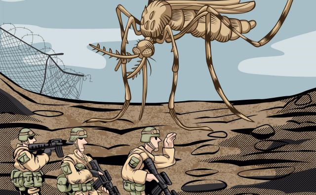 Vietnamska vojna je potekala na malaričnih območjih. Foto Shutterstock