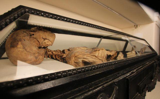 Hadikova mumija že od devetnajstega stoletja buri domišljijo. Foto Jože Pojbič