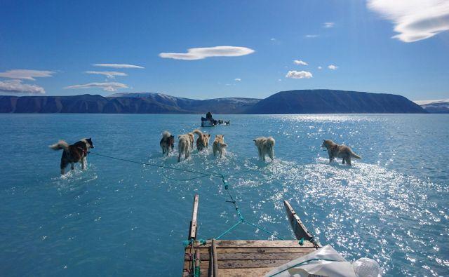 Led je bil včasih varen od februarja do junija ali julija, zdaj zmrzuje pozneje in se tali bolj zgodaj, zato so razmere za lov s sanmi z vlečnimi psi vse bolj nevarne. FOTO: AFP