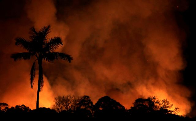 A fire burns a tract of Amazon jungle as it is cleared by loggers and farmers near Porto Velho, Brazil August 31, 2019. REUTERS/Ricardo Moraes Foto Ricardo Moraes Reuters