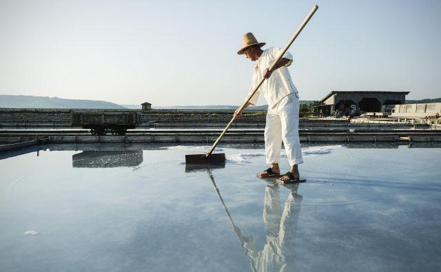 Solinarji upajo, da se bo sezona pobiranja soli raztegnila čim dlje v september. Foto Uroš Hočevar