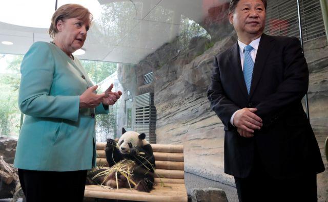 Angela Merkel in Xi Jinping sta pred dvema letoma v Berlinu preizkušala meje »pandovske diplomacije«. Tokratni obisk bo posvečen ustvarjanju konkretnih in ne toliko simboličnih vezi. FOTO: Reuters