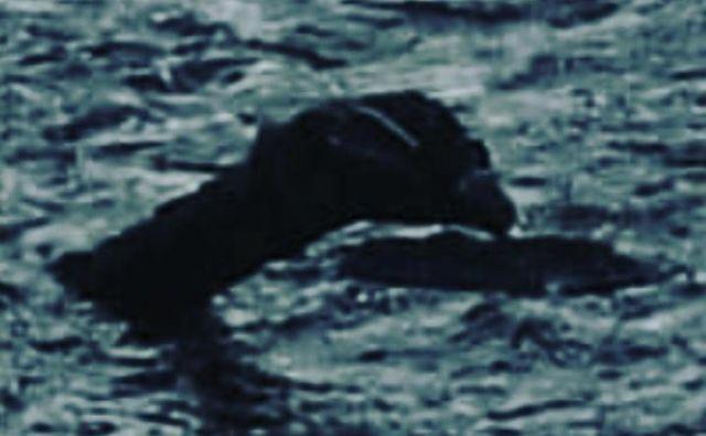 Legendarna Nessie na Škotsko vsako leto privabi več sto tisoč obiskovalcev. FOTO: Instagram
